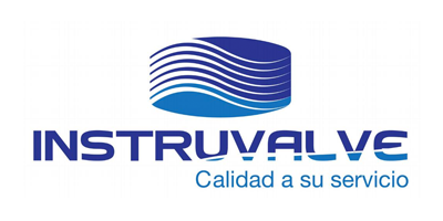 Instruvalve Logo